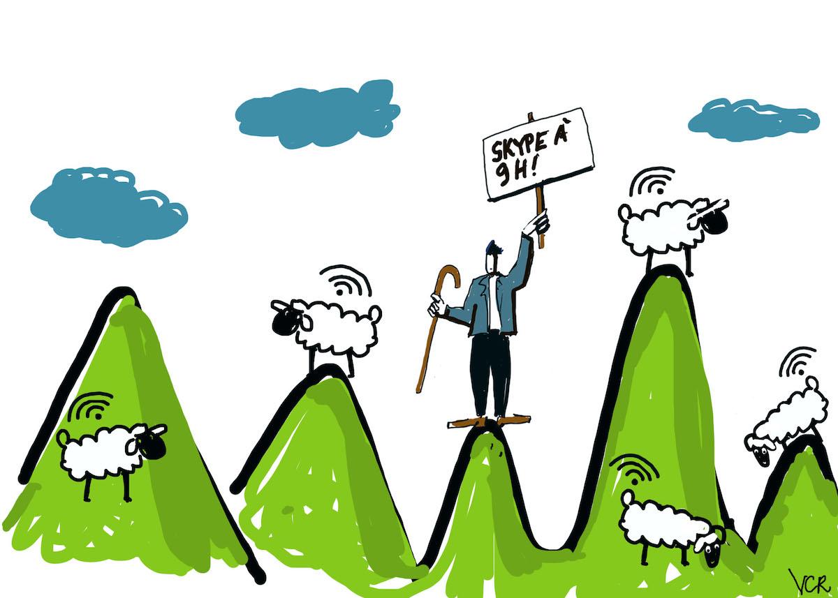 Télétravail : en alpage, des bergers contraints de s'adapter au confinement !